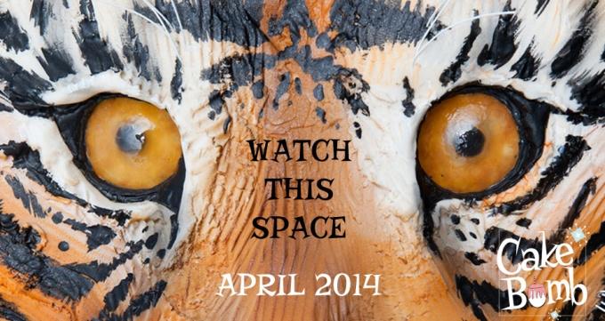 AAslider tiger eyes