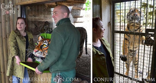annabel tiger slider 2