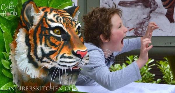 annabel tiger slider 3