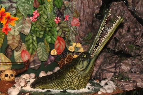 Gharial crocodile by Annabel de Vetten