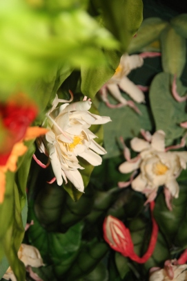 Brahma Kamal flower by Arty Tarts
