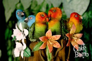 Molly Robbins' parrots